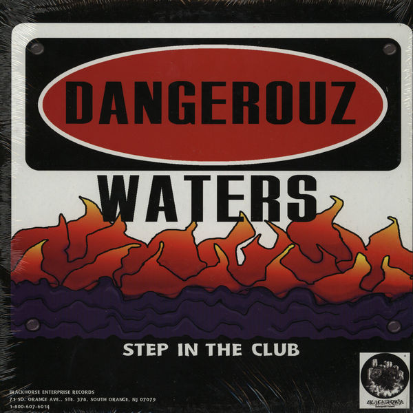Dangerouz Waters - Step In The Club (12